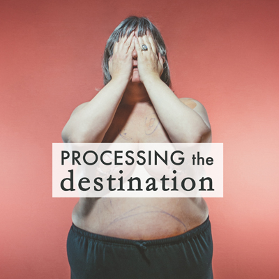 processing the destination by gracie hagen breast cancer double mastectomy reconstructive surgery
