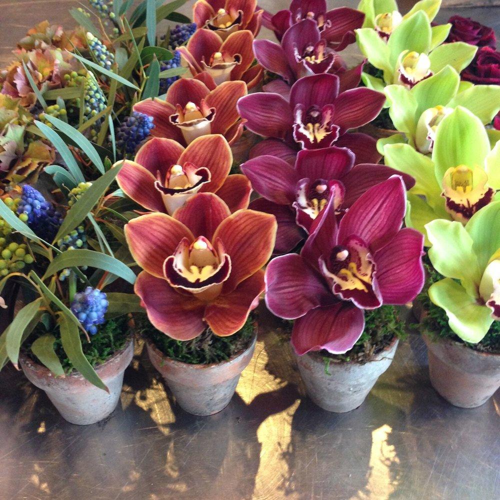 chicago-social-flowers.jpg