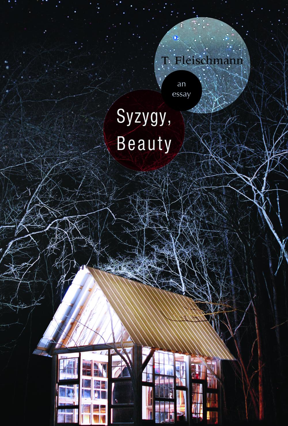 syzygy beauty an essay t fleischmann sarabande books