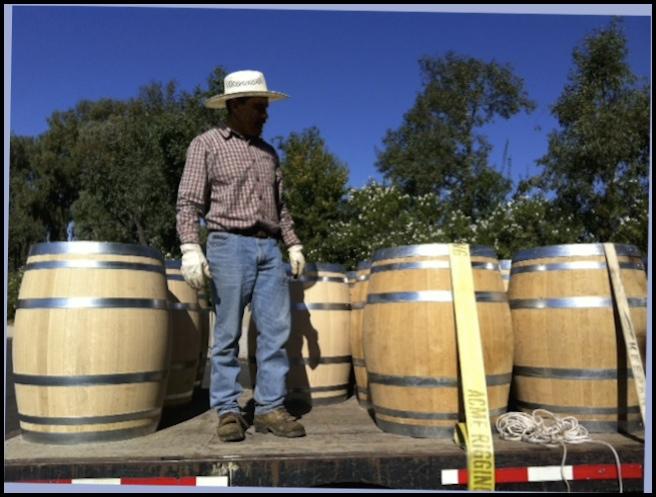 Mi Sueno Barrels