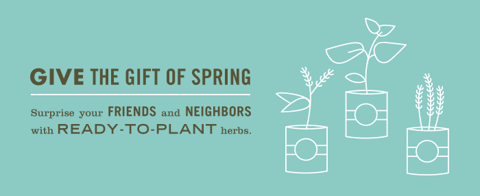 Give the Gift of Spring Craft
