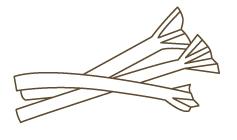 rhubarb1