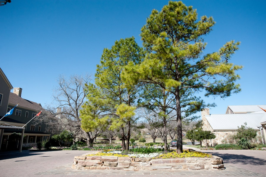 Austin_Travel_Writer_Photographer_Hyatt_Lost_Pines_9.jpg