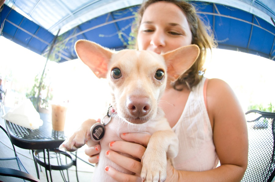 Austin_Travel_Writer_Photographer_Dogs010.jpg