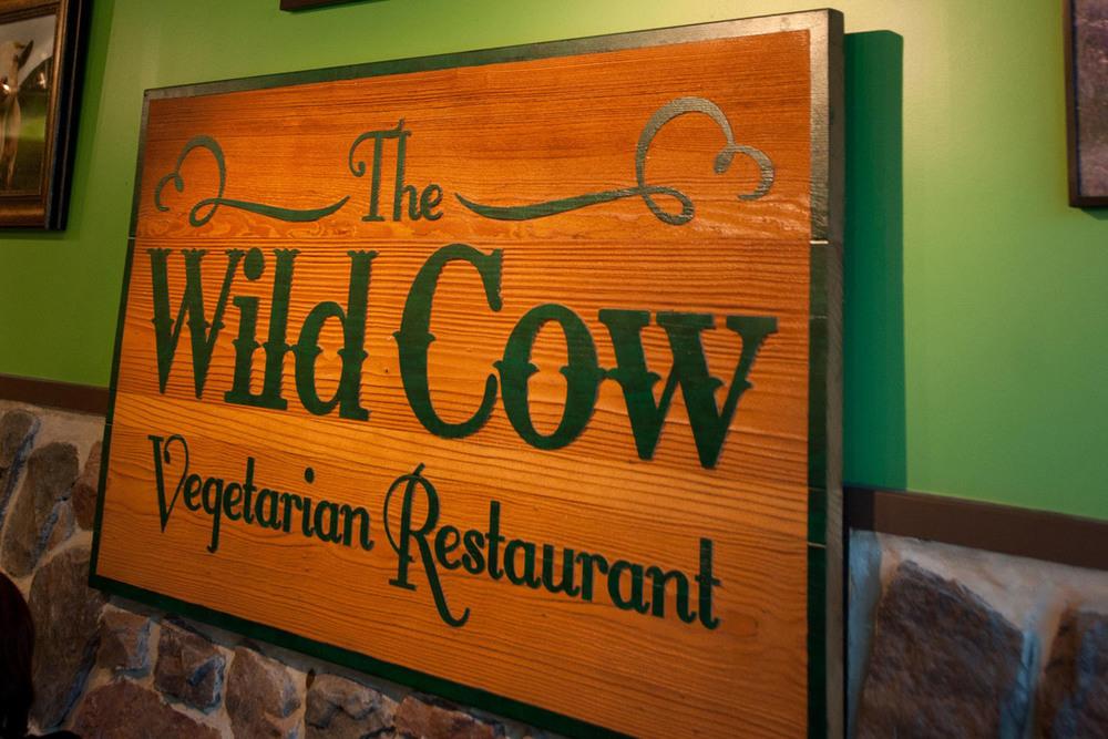 Wild Cow022b.jpg