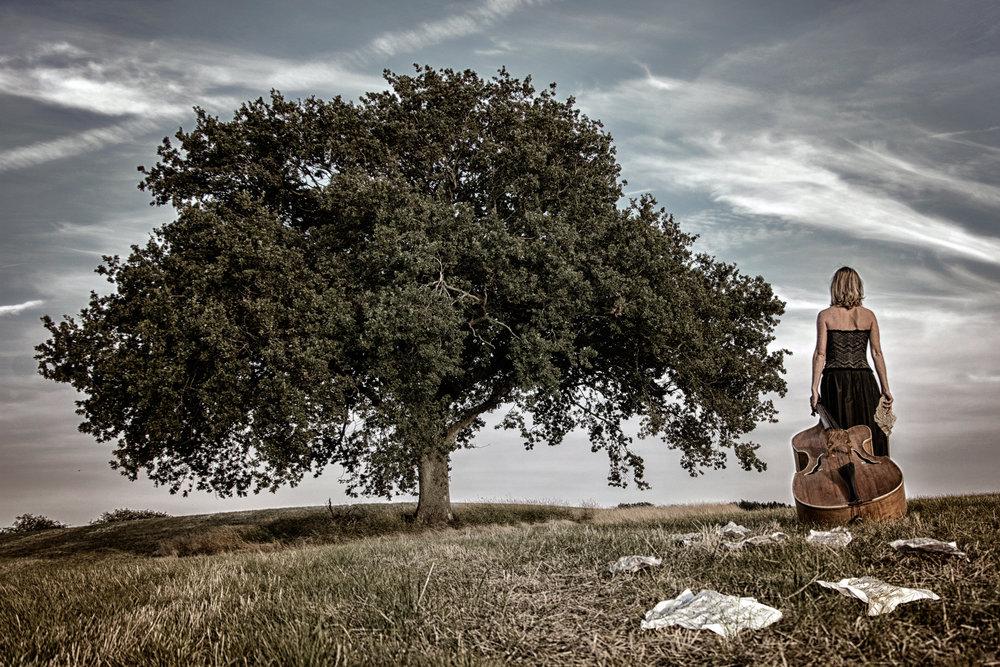 S5001d - Johnny Kristensen - Sound of music.jpg