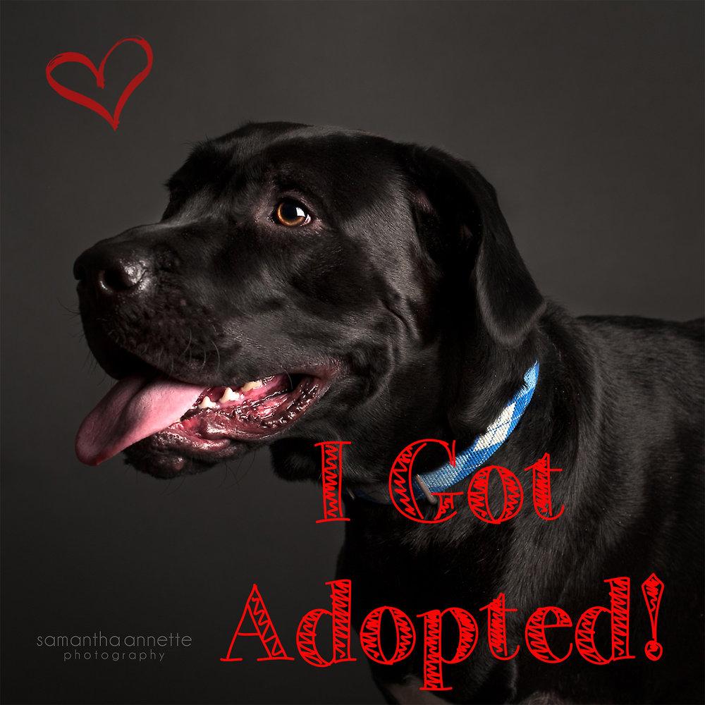 bones got adopted.jpg