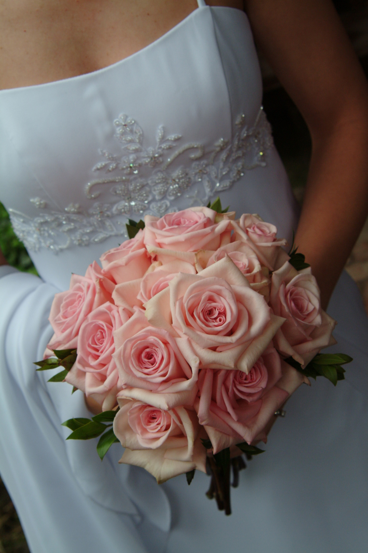solid Anna roses.jpg