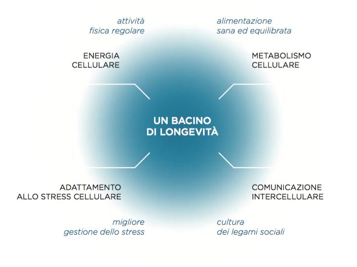 Meccanismi biologici essenziali della longevità