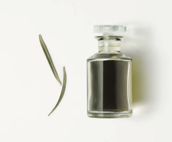 Estratto di oleoactif d'olivo della sardegna