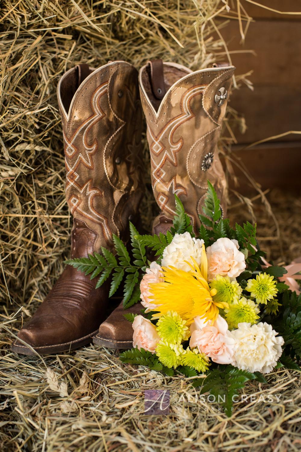 Wendy Horse Bridal-11.jpg