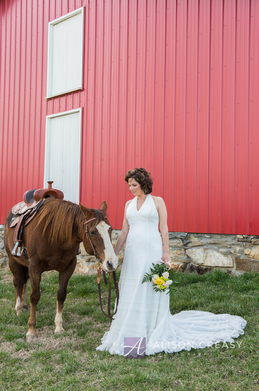 Wendy Horse Bridal-75.jpg