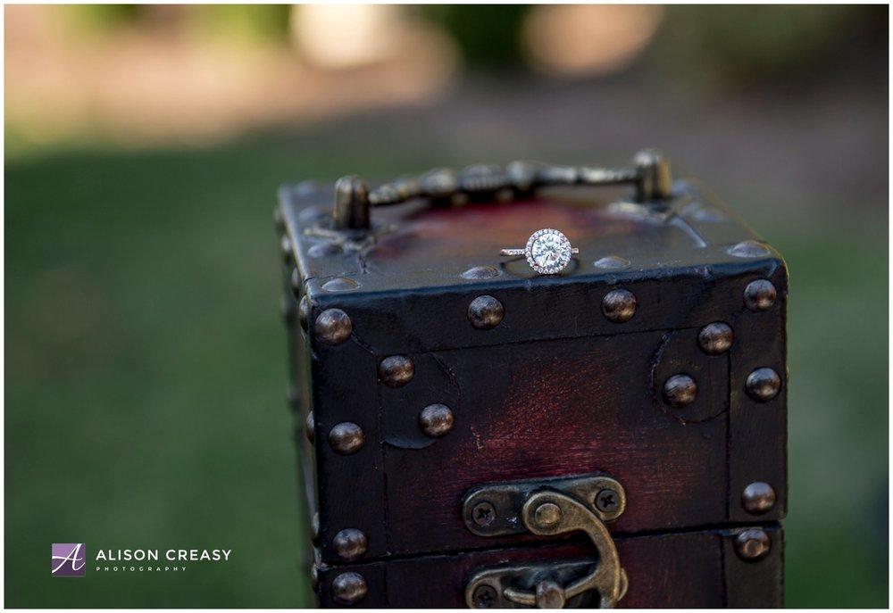 Alison Creasy Photography_West Manor_Lynchburg VA 4.jpg