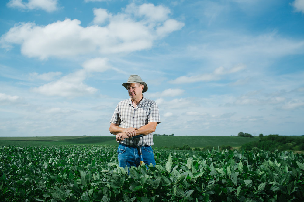 Chris Teachout, a fifth-generation farmer outside of Shenandoah. Teachout uses cover crops between corn and soy plantings to protect and regenerate the soil.