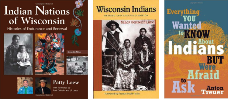 American Indians E-course books.png