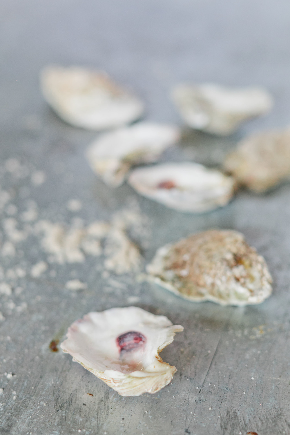 Atlanta-Product-Photographer-DIY-Kathryn-McCrary-Photography-Gold-Oyster-Shells-Craft3.jpg