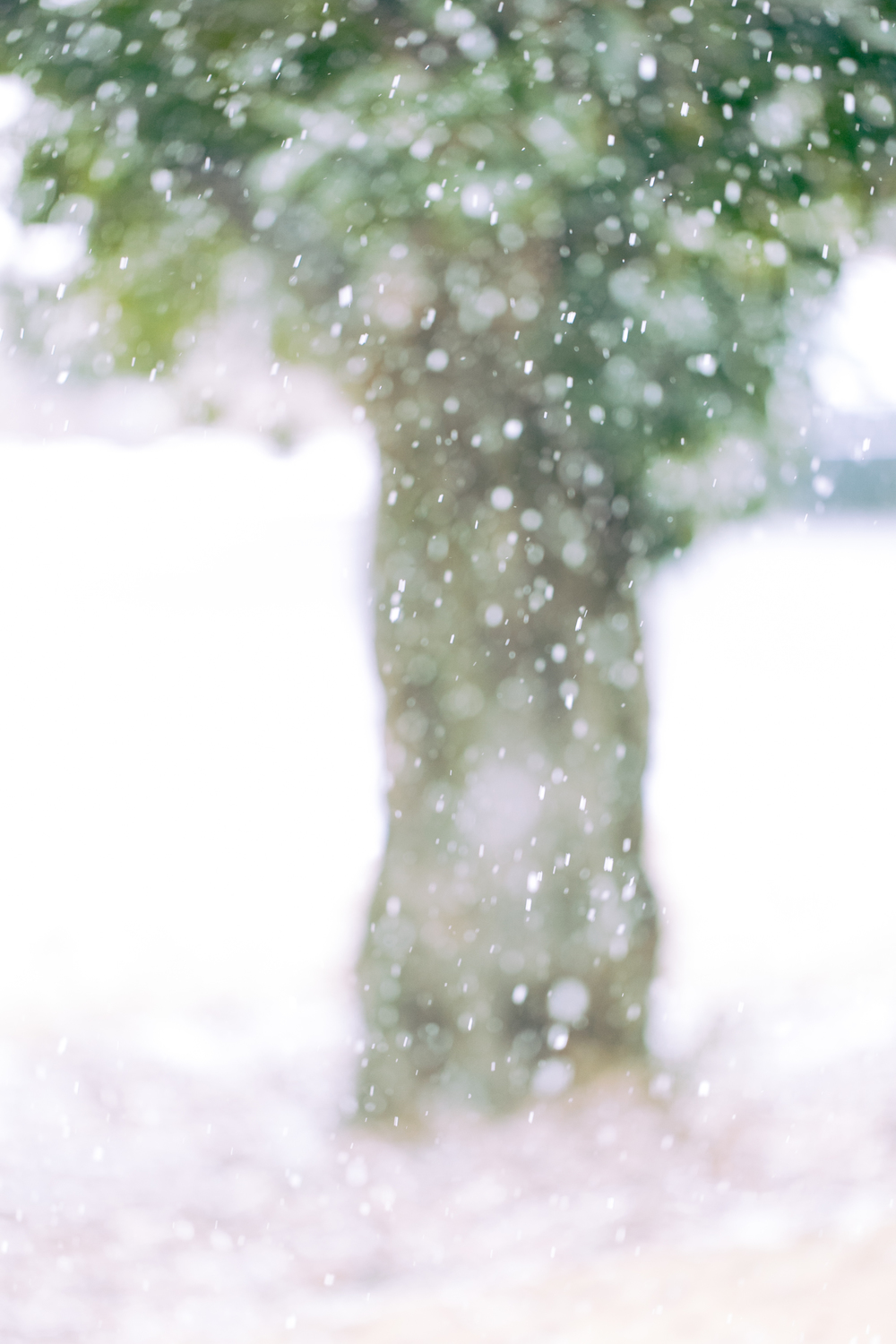 Atlanta-Lifestyle-Photographer-Kathryn-McCrary-Photography-Atlanta-Snow-2014-3.jpg