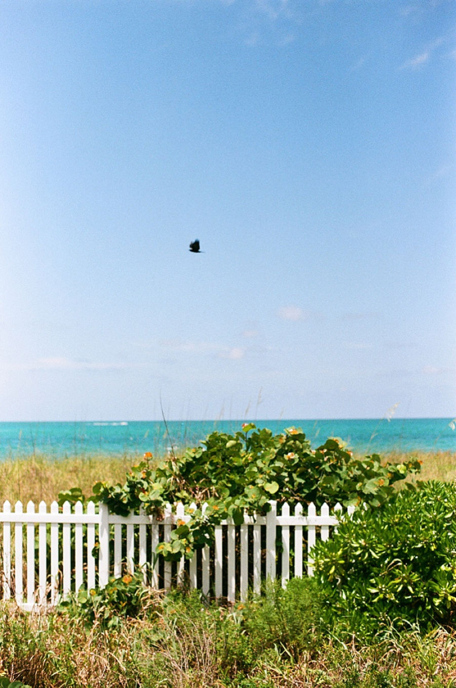 Atlanta Travel and Lifestyle Photographer Boca Grande Kathryn McCrary Photography_0016.jpg