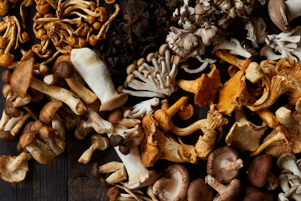 Creative Play - Mushrooms with Tami Hardeman