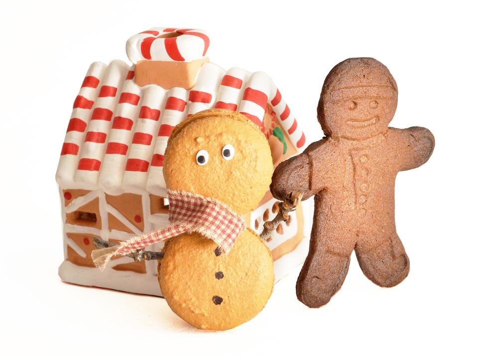 gingerbread3.jpg