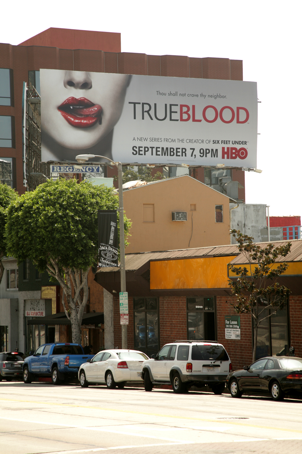 True Blood_LA_103.jpg