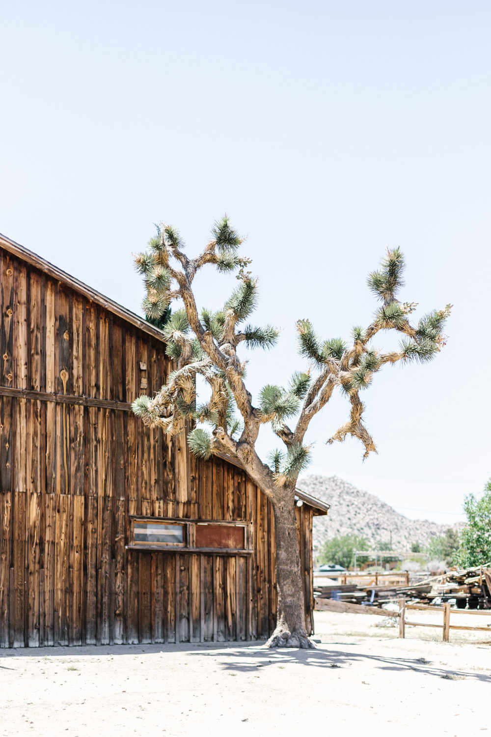 Marnie Hawson Melbourne   travel photographer, Pioneertown CA