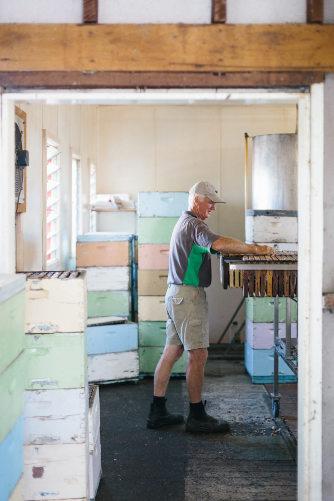 Melbourne lifestyle photographer Marnie Hawson's An Honest Trade project - Central Murray apiarist Colin Barton