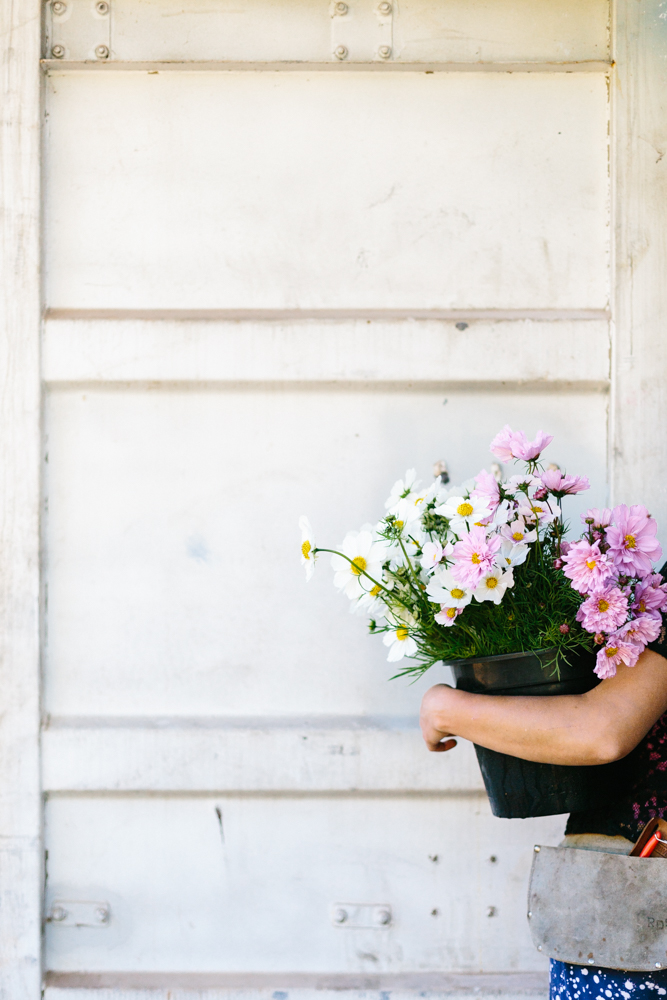 Melbourne lifestyle photographer Marnie Hawson's An Honest Trade project - organic flower grower Lindsey MyraMelbourne lifestyle photographer Marnie Hawson's An Honest Trade project - organic flower grower Lindsey Myra
