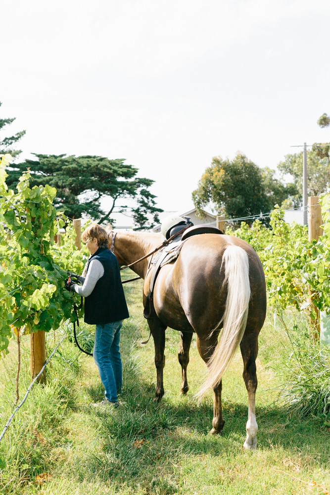Kiltynane Winery-14.jpg