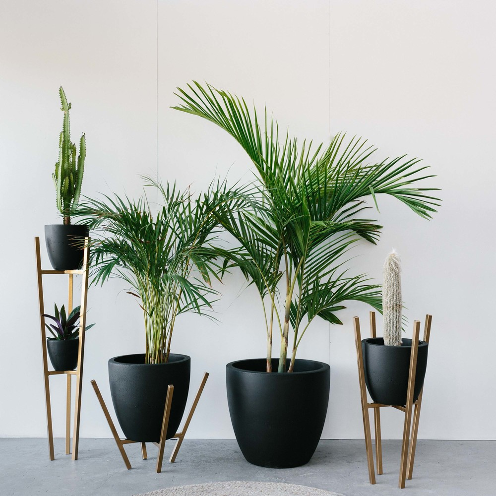 Marnie Hawson, Melbourne lifestyle photographer, for Fox & Ramona (concrete planters and homewares)