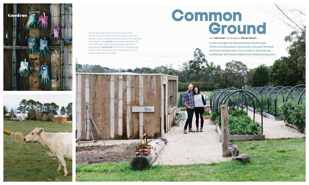 A Plot in Common for Green Magazine: Images by Marnie Hawson