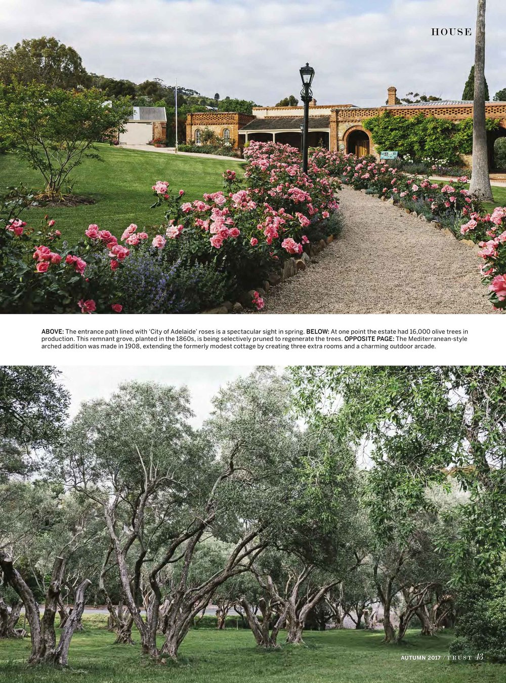 Marnie Hawson, Melbourne interior photographer for Trust magazine, Issue 2 (Beaumont House, Adelaide)