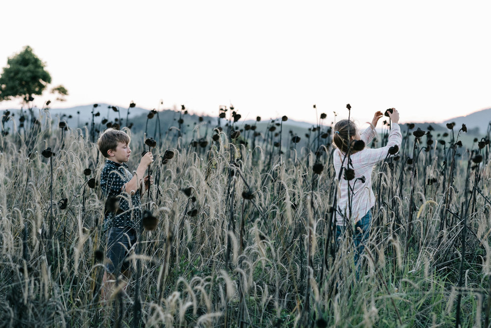 Marnie Hawson, Melbourne lifestyle photographer for Country Style and Kandanga Farm, QLD