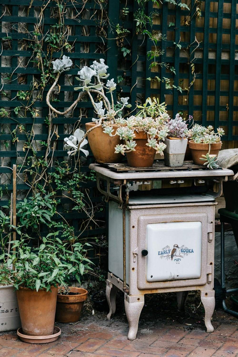Melbourne lifestyle photographer Marnie Hawson for Country Style and Jane Edmanson