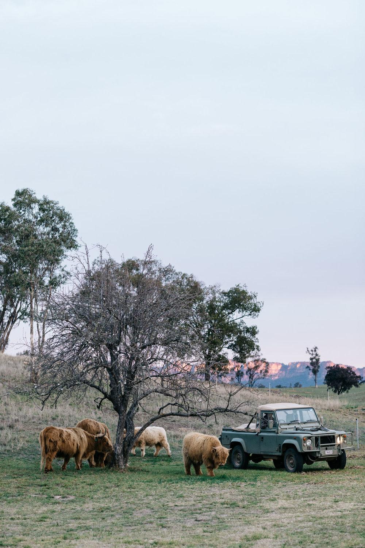 Edwina + Neil Bartholomew at Warramba for Country Style. Photography by Marnie Hawson, styling by Hannah Brady.