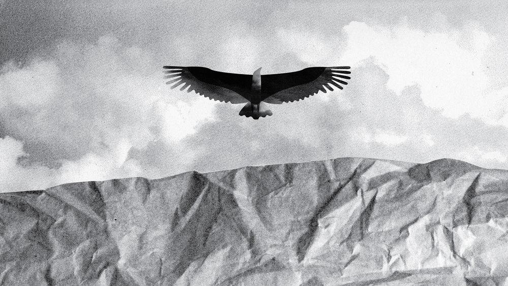 Vultures_Character_2000.jpg
