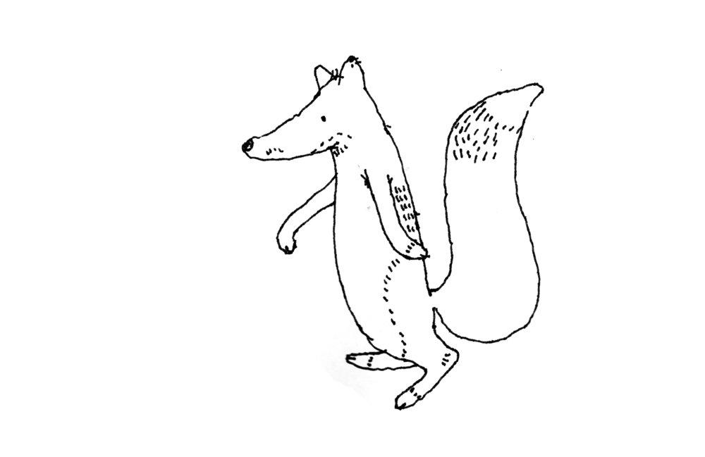 fox_colorcrop.jpg