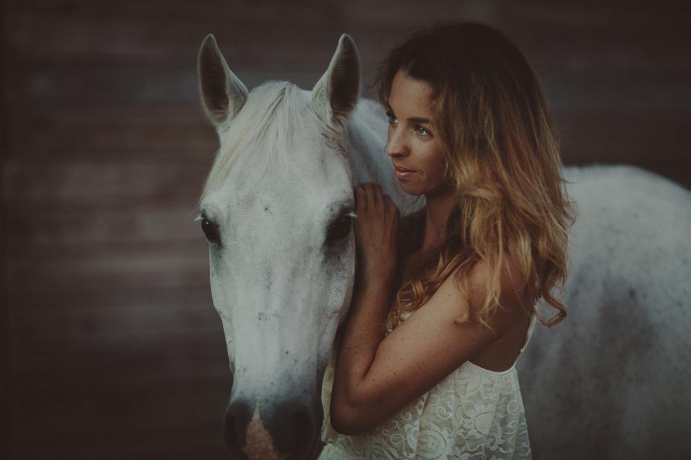 Horses15-19.jpg