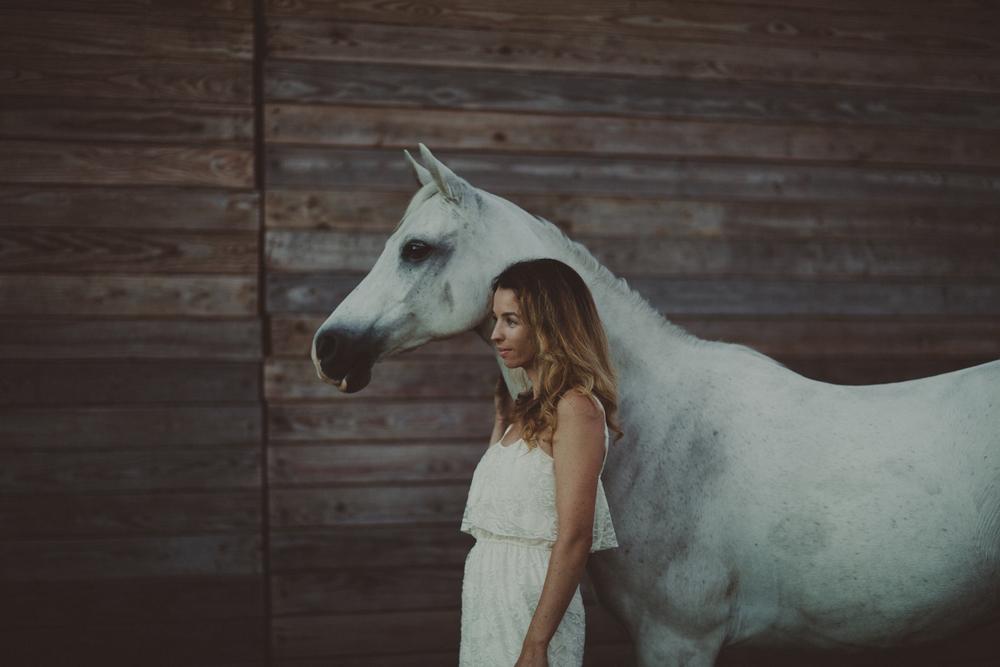 Horses15-23.jpg