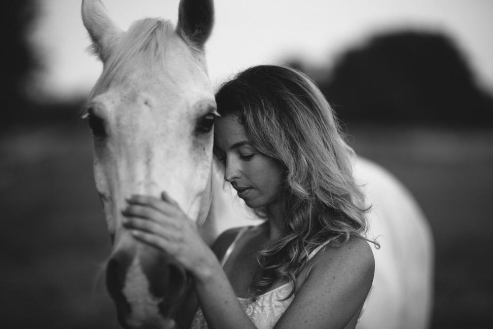 Horses15-25.jpg