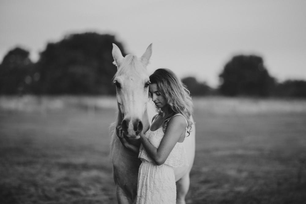 Horses15-30.jpg
