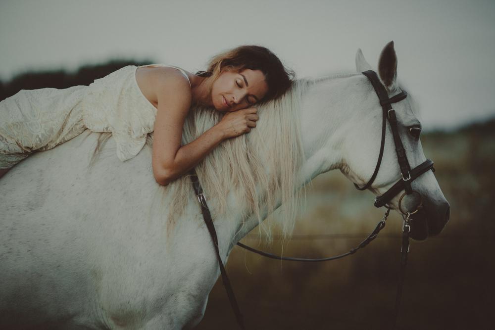 Horses15-47.jpg
