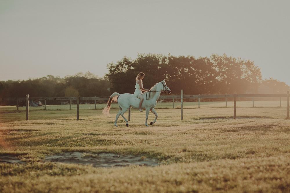 Horses15-67.jpg
