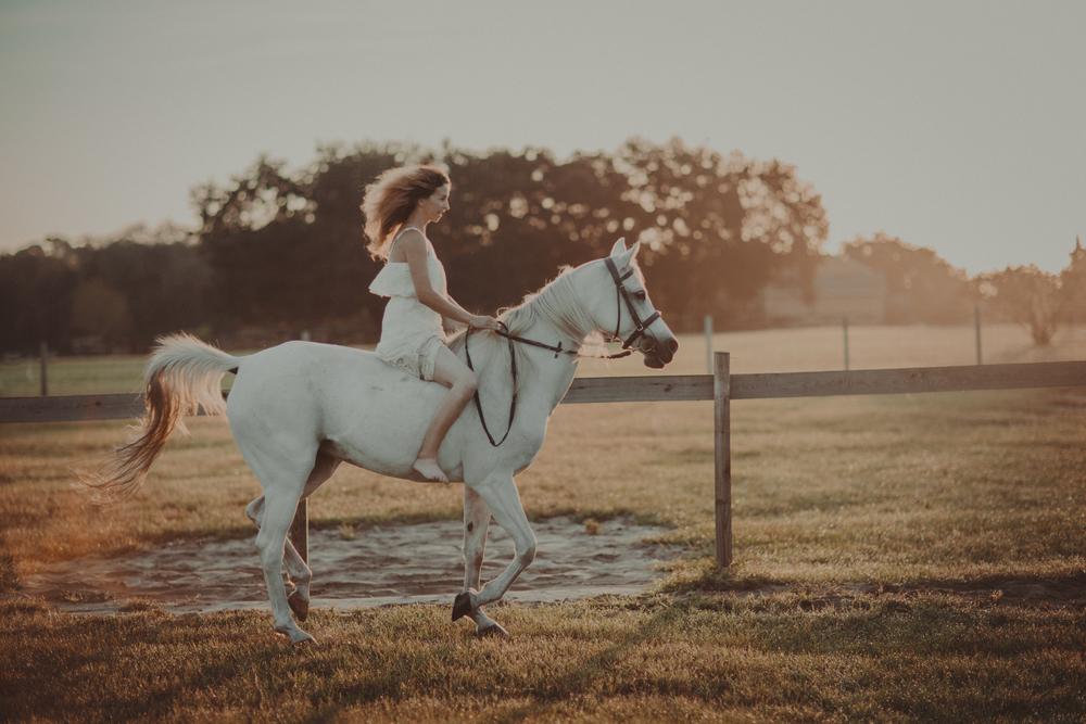 Horses15-75.jpg