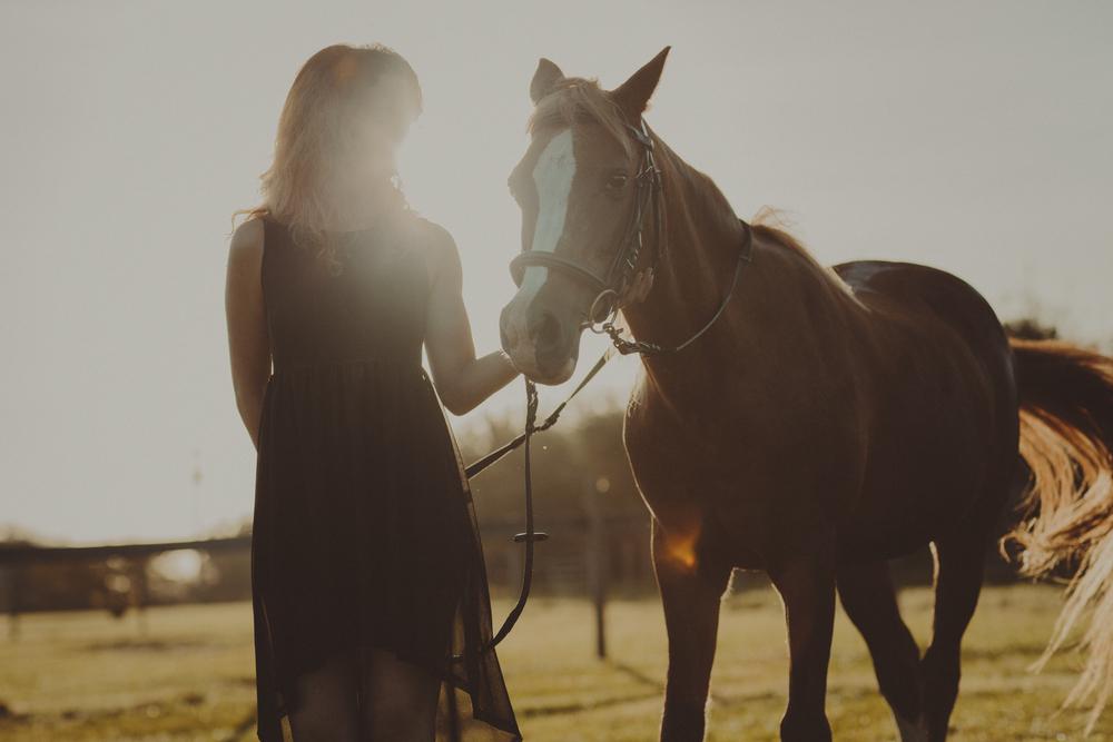 Horses15-93.jpg