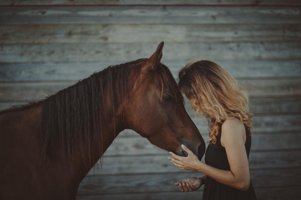 Horses15-103.jpg
