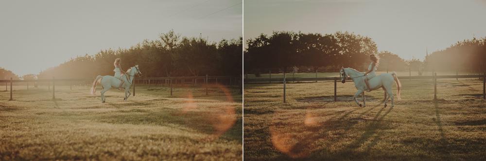 Horses15-68-2.jpg