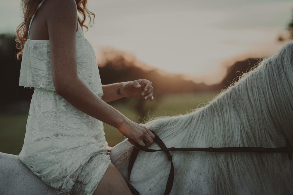 HorsesBlog-31.jpg