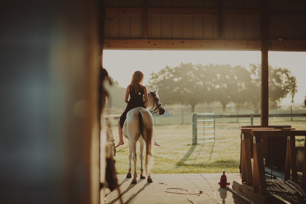 HorsesBlog-37.jpg