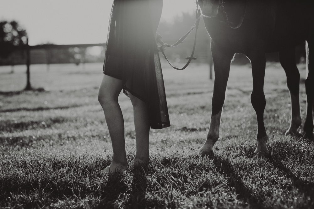 HorsesBlog-41.jpg